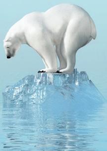 Politiek incorrecte ijsbeer