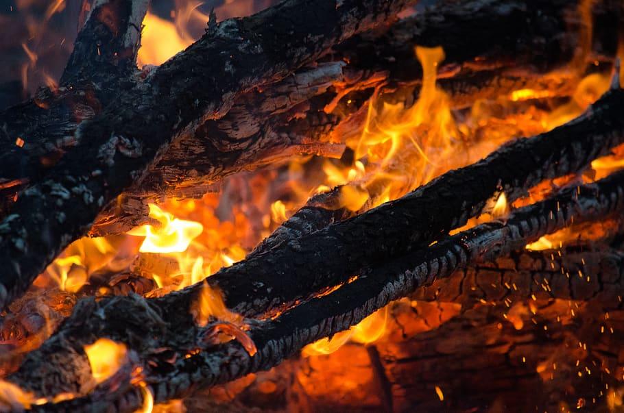 Milieubeleid verantwoordelijk voor bosbranden Australie